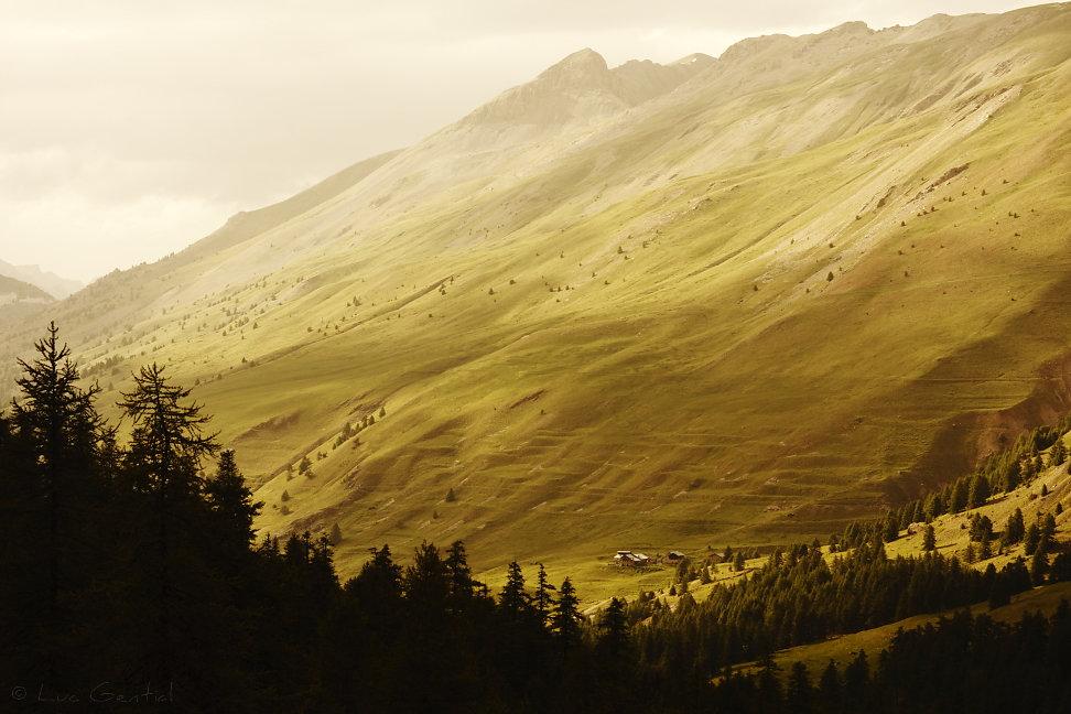 La vallée du Cristillan dans le Queyras